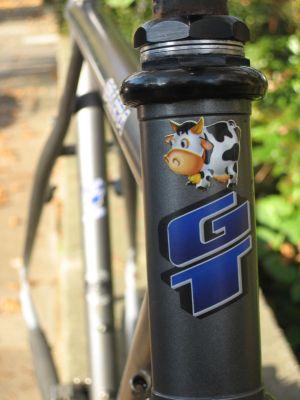 GT Talera mtb mountain bike deore lx witcomb